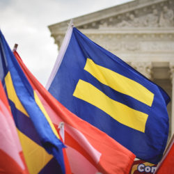 A Brief Legislative History of the LGBT Rights Movement